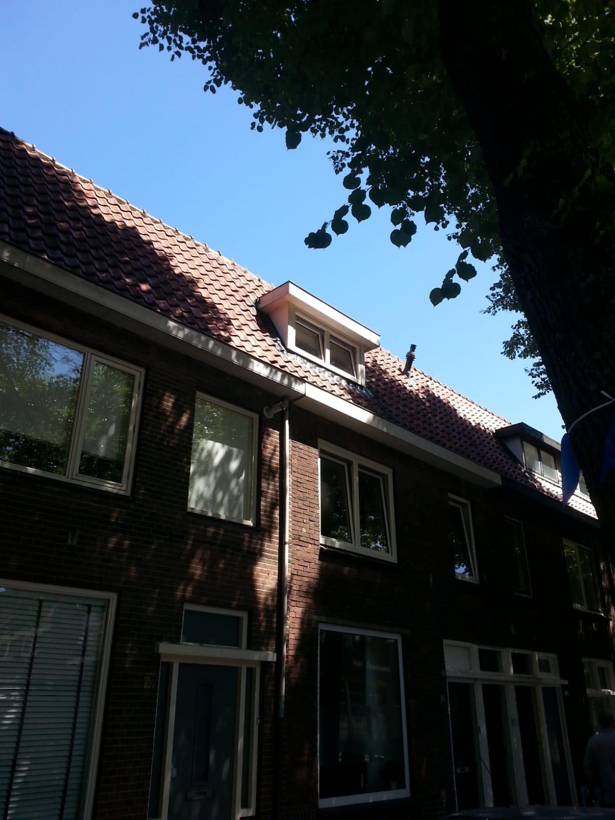 Dakkapel renovatie en kozijn vervangen te Utrecht!